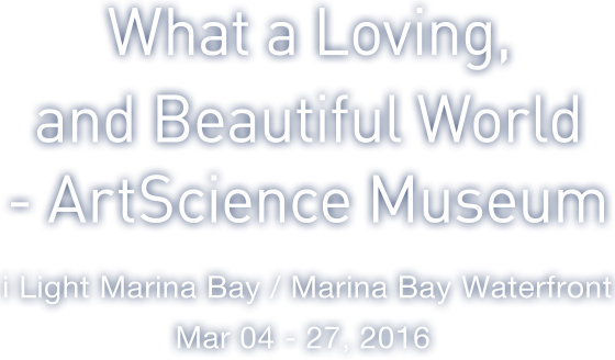 What a Loving,and Beautiful World -ArtScience Museum i Light Marina Bay / Marina Bay Waterfront / Mar 04 - 27, 2016
